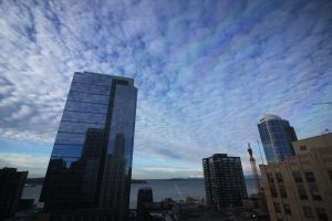 Seattle Smiles Dental – View from Office